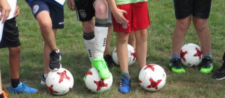 FFG ist Partnerschule des Fußballs