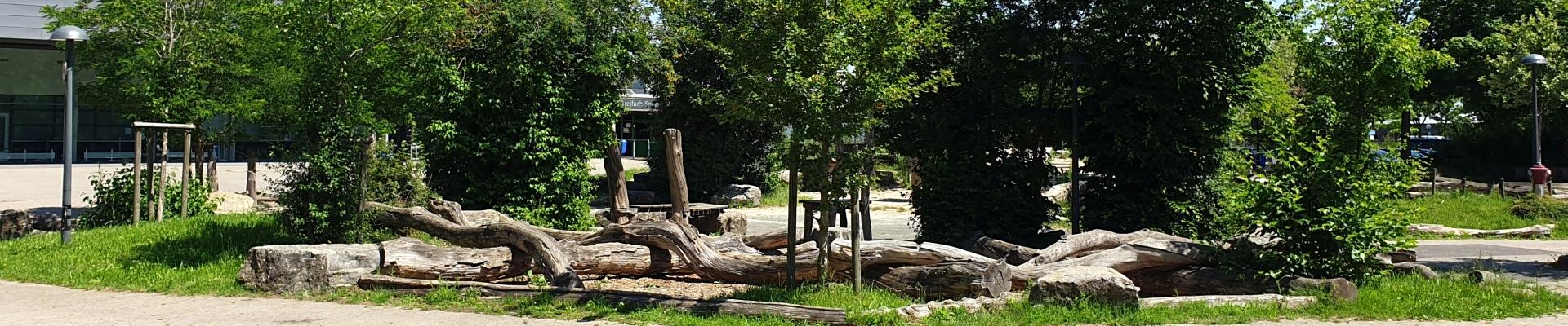 Abiturjahrgang gestaltet Skulpturenpark